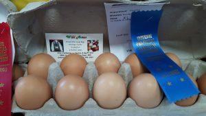 meduim brown eggs ipe